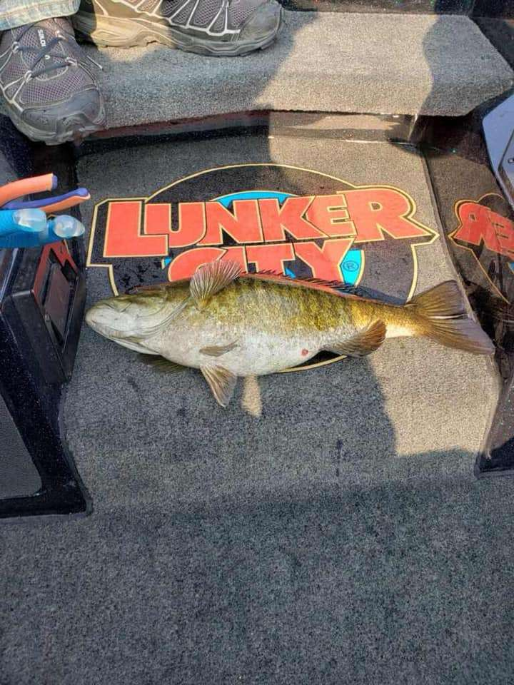 Slow Crawling Lunker: Fish Couldn't Resist It! 7